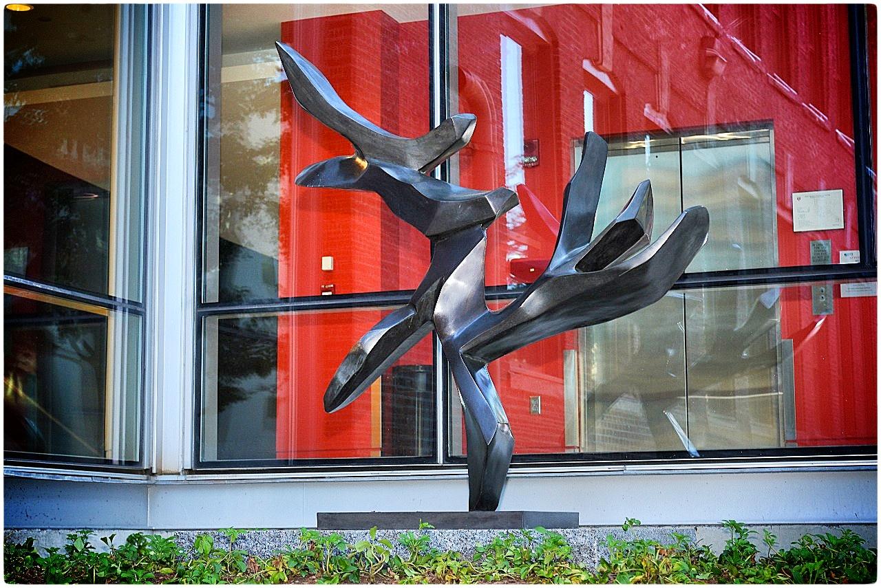 """Rzeźba """"Tree of peace"""" przed Uniwersytetem Harvarda"""